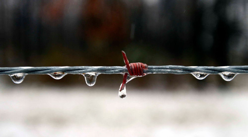Description of . Ice and rain cling to a barbed wire fence along a country road in Culpeper County. An overnight storm brought rain, snow and ice to the Culpeper area on Wednesday, Dec. 26 2012. (AP Photo/The Free Lance-Star, Reza A. Marvashti)