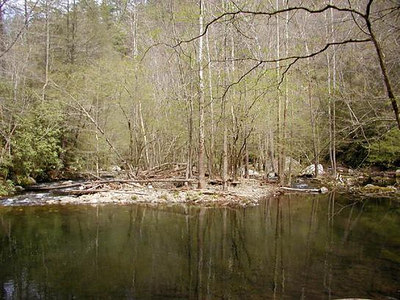 12 Downstream-View-Slickrock-Creek.jpg