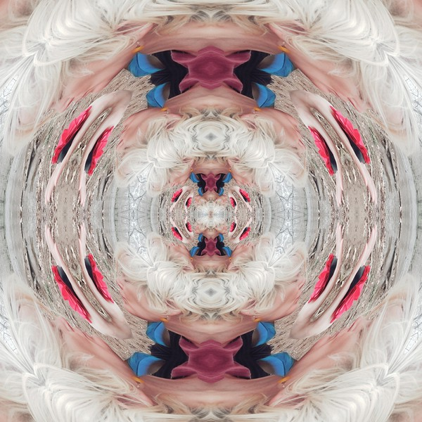 10285_mirror16.jpg