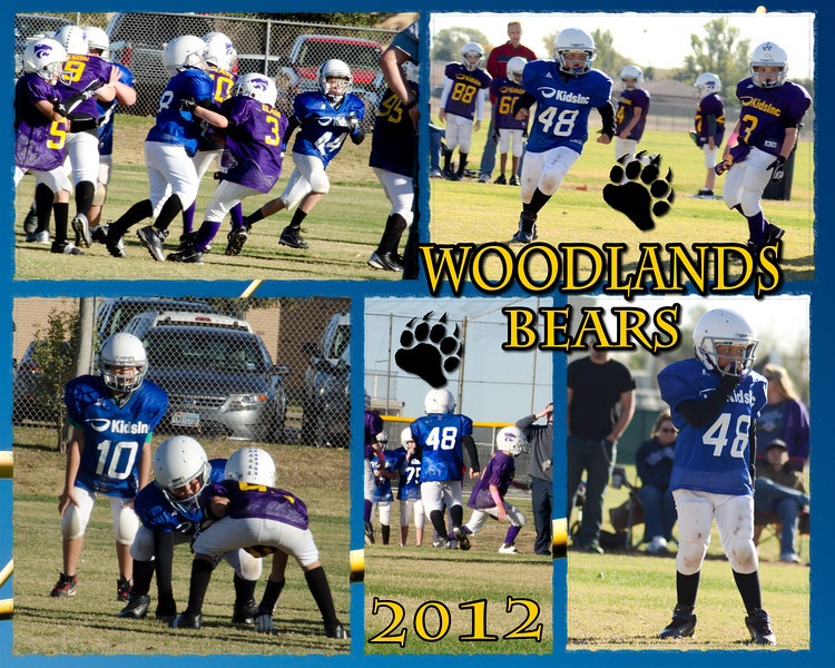 Will-Collage-Woodlands-Bears-2012-000-Page-1.jpg