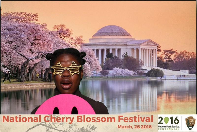 Boothie-NPS-CherryBlossom- (457).jpg
