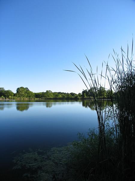 Ledge Lake