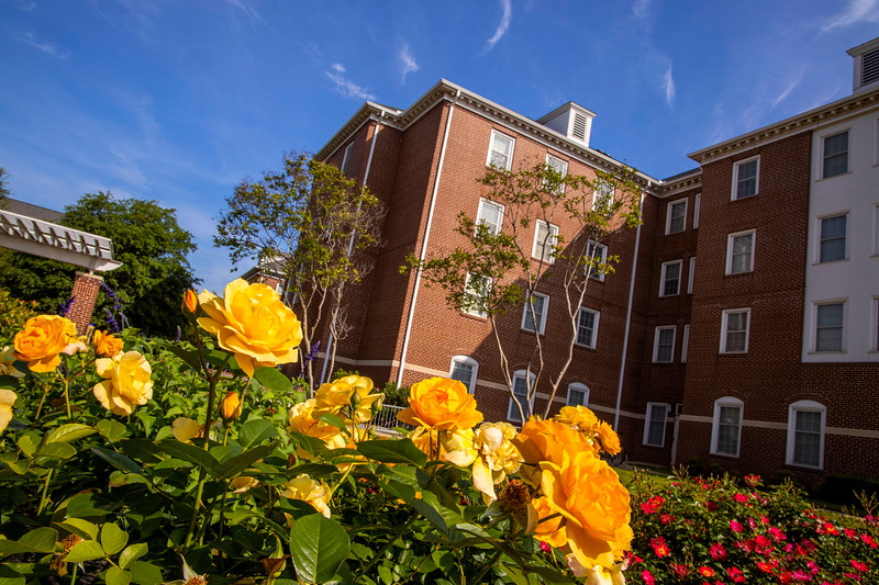 North Village Residential Community - flowers, hall, Spring
