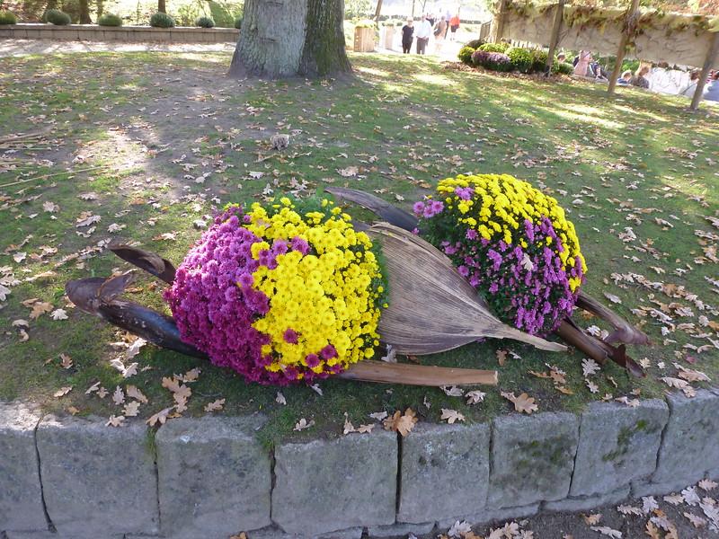 Chrysanten doen ons vooral denken aan begrafenissen of dodenherdenkingen op het kerkhof, maar in het Verre Oosten staan deze bloemen voor geluk. De chrysant of Kiku is zelfs het symbool van de Japanse keizer! Een uitstekende reden dus om een festival of matsuri rond deze verrassend veelzijdige bloem te organiseren en om van de tuin een heel bijzondere blikvanger te maken.