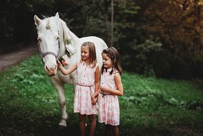 Sharp Unicorn Mini