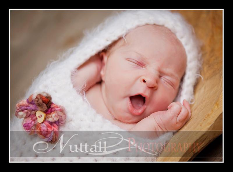 Clara Newborn 18.jpg