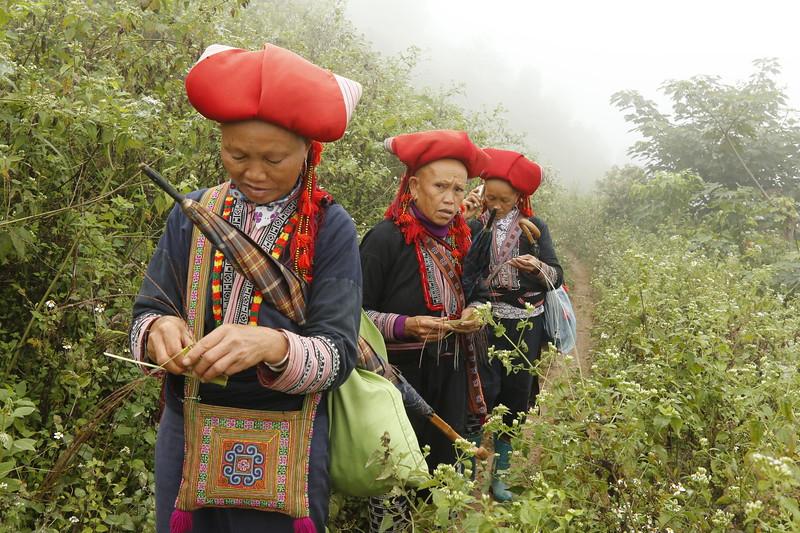 Dao women weave gifts while walking.