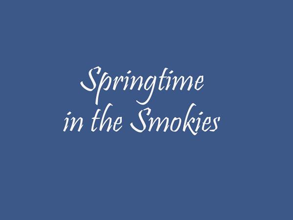 spring scenes smokies3.mp4