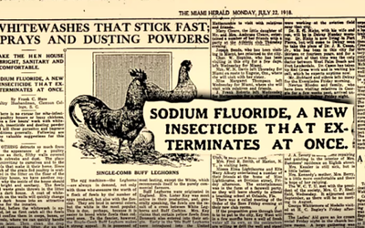 SODIUM FLUORIDE – ONCE USED AS RAT POISON & AN INSECTICIDE! ALSO KNOWN TO KILL HUMANS – POISON ON TAP