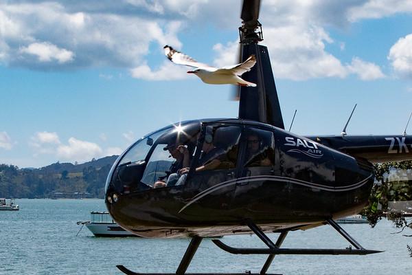 Bay of Islands - Scenic Flight - New Zealand