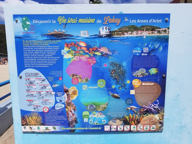 Martinique (18).jpg