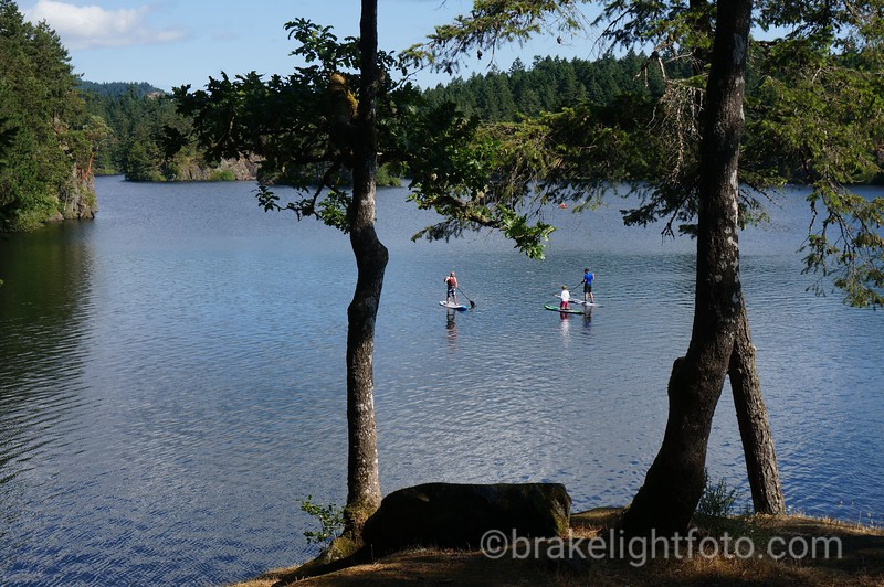 Paddleboards on Thetis Lake in Summer