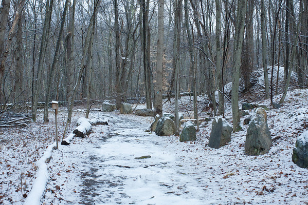Westchester Wilderness Walk - December 25, 2012
