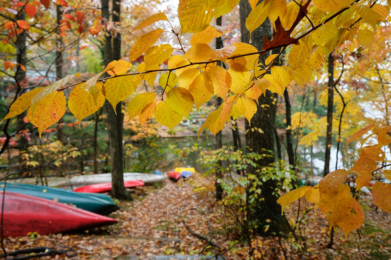 Autumn leaves and canoes at Lake Anne
