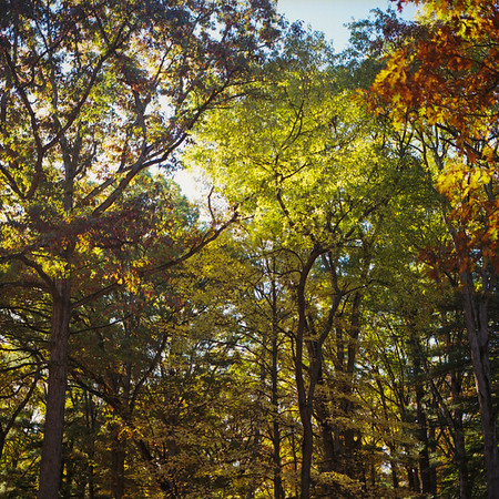 Richfield County Park
