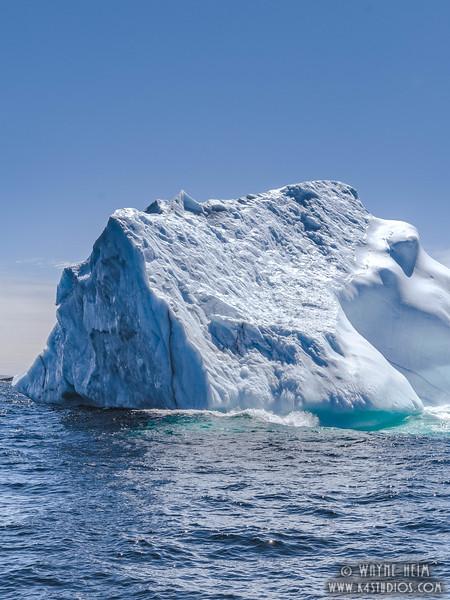 Iceberg 64    Photography by Wayne Heim