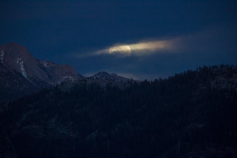 20150503-Yosemite-5D-128A1058.jpg