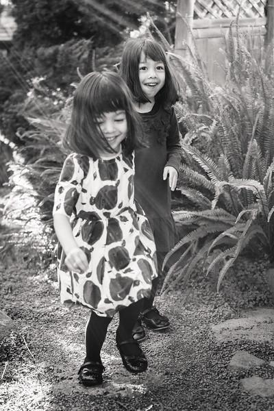 The-Sinha-Family-Japanese-Garden-5.jpg