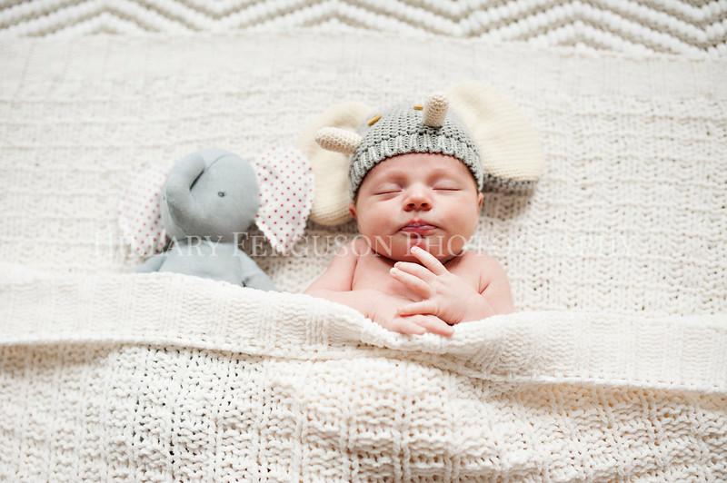 Hillary_Ferguson_Photography_Carlynn_Newborn032.jpg