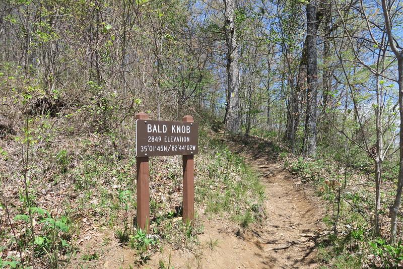 Bald Knob - 2,849