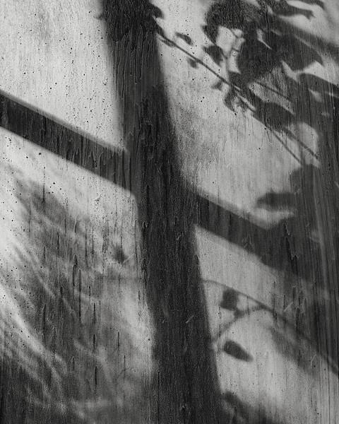 under-glass-13.jpg