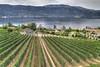 "Gray Monk Estate Winery, Kelowna, BC, Canada - <a href=""http://www.graymonk.com"">http://www.graymonk.com</a><br /> <br /> Google Map: <a href=""http://goo.gl/maps/I3oQG"">http://goo.gl/maps/I3oQG</a>"
