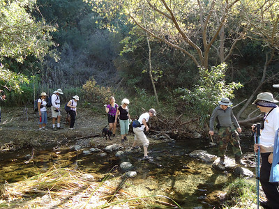 Lynnmere / Wildwood Canyon Loop
