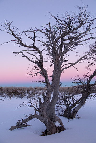 Twilight and Earth's Shadow