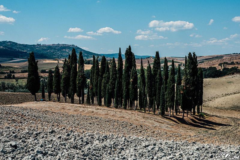 valdorcia-6536.jpg
