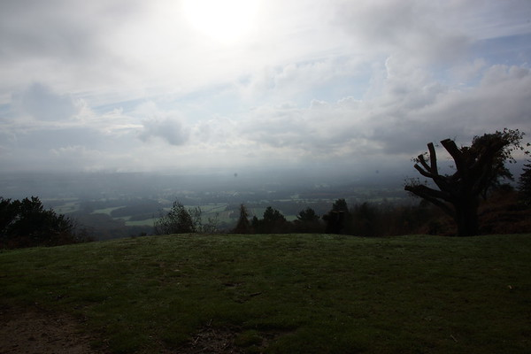 2014-11-15 Leith hill dog walk
