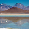 On the Bolivian Altiplano