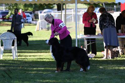 Sweeps 15-18mo Dog BMDCW 2010