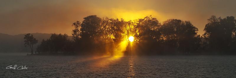 Misty Sunrise Through Trees.