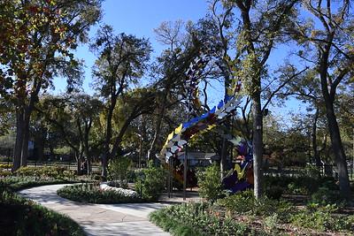 11-1-2020 Grapevine Botanical Gardens 4 pm