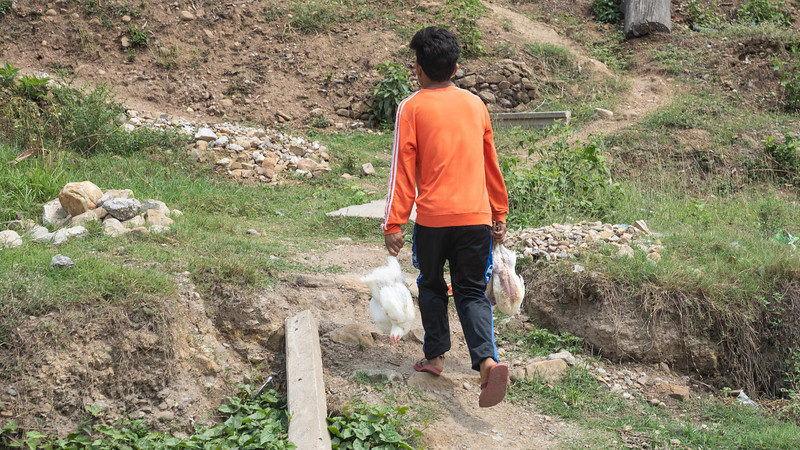190409-120012-Nepal India-5938.jpg