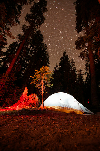 20140825_sequoia_0311.jpg