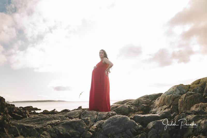 Kiran's Maternity Shoot - Cattle Point, Victoria BC. -99.jpg