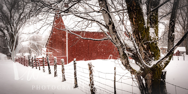 wlc winter barns21January 30, 2016-Edit.jpg