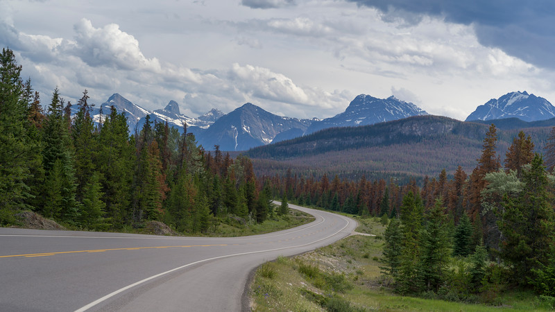 Highway with mountains in the background, Icefields Parkway, Jasper, Alberta, Canada