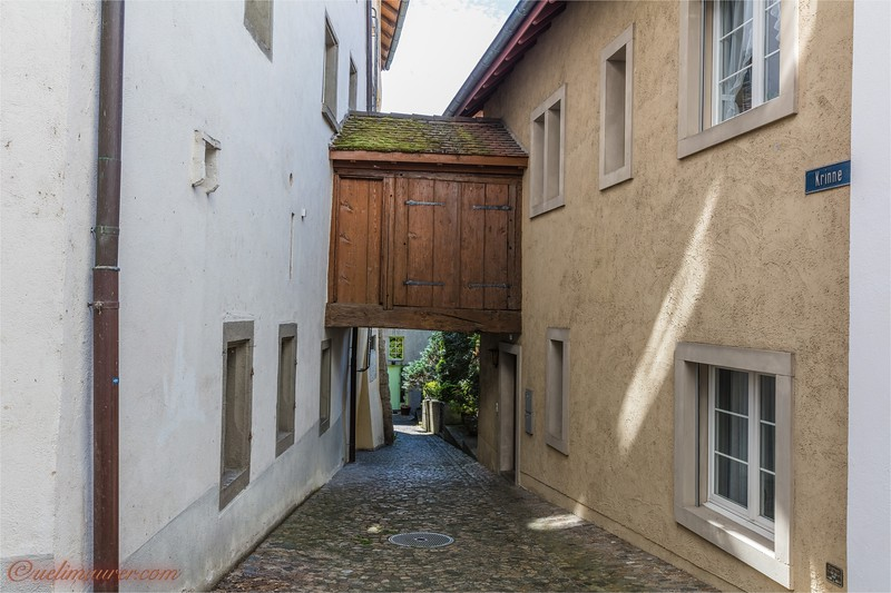2017-07-03 Brugg und Umgebung -2102.jpg