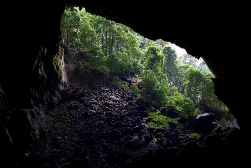 """""""Garden of Eden"""" in Deer Cave"""