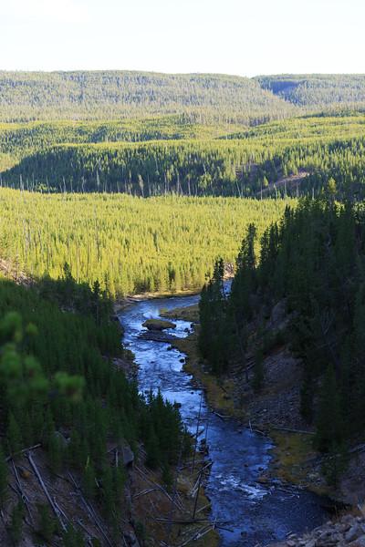 Gibbon River 001
