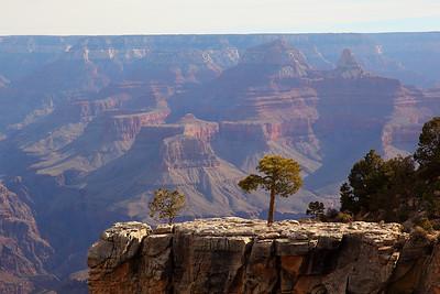 Arizona - March 2012