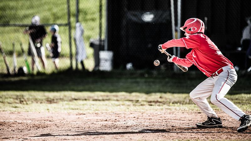 2019 Saranac Varsity Baseball