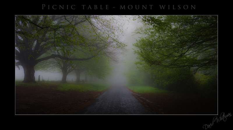 Picnic Table - Mt Wilson