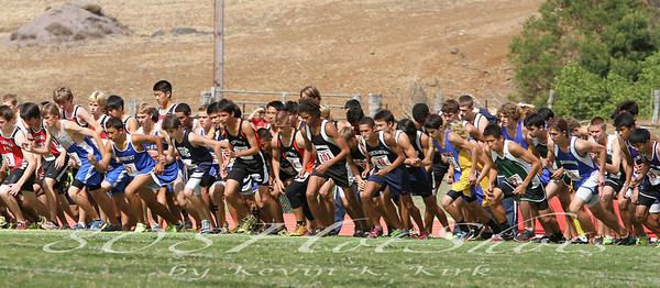 2012 HHSAA Cross County Championships