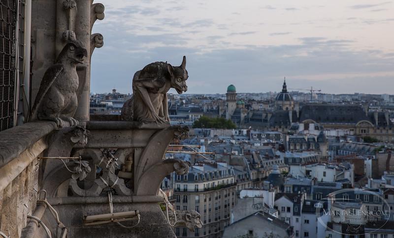 Notre Dame, Paris-29.jpg