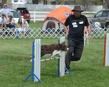 Salt Lake Dog Show 2011 - Agility