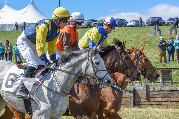 Green Spring Valley Point-to-Point 033119