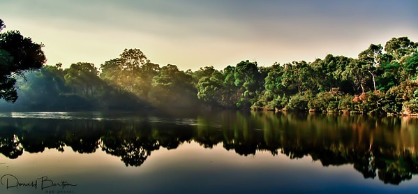 Blackburn Lake Sanctuary ~ April